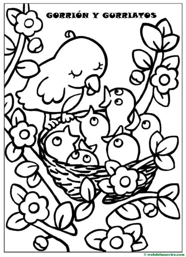 Dibujos Para Pintar Animales Para Pintar Dibujo Abuela Dibujos