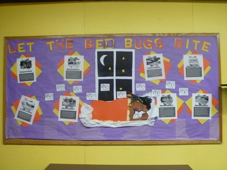 Bed Bugs Classroom Bulletin Board Idea Social studies
