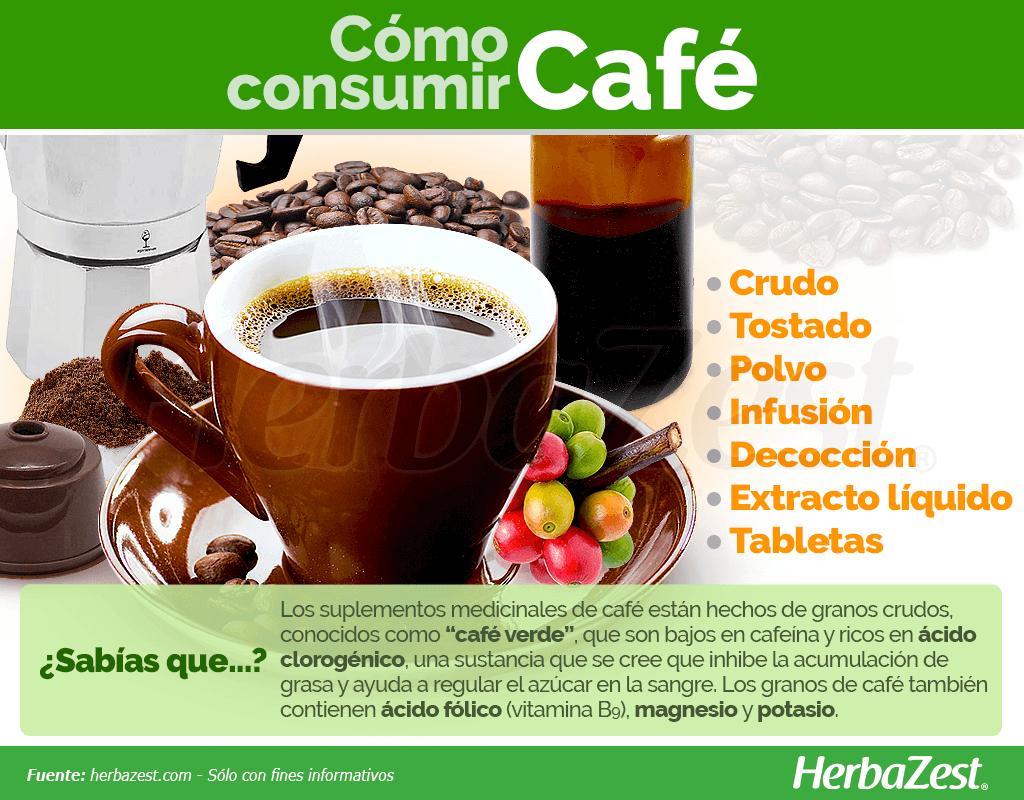 El Café Es Una De Las Hierbas Más Populares Del Mundo Consumida Principalmente Por Su Beneficios De Alimentos Alimentos Ricos En Minerales Beneficios Del Cafe
