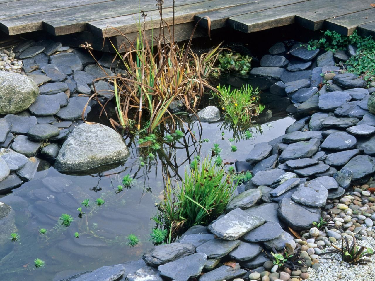 River rock garden with real water a self made rock river for Rock ponds designs