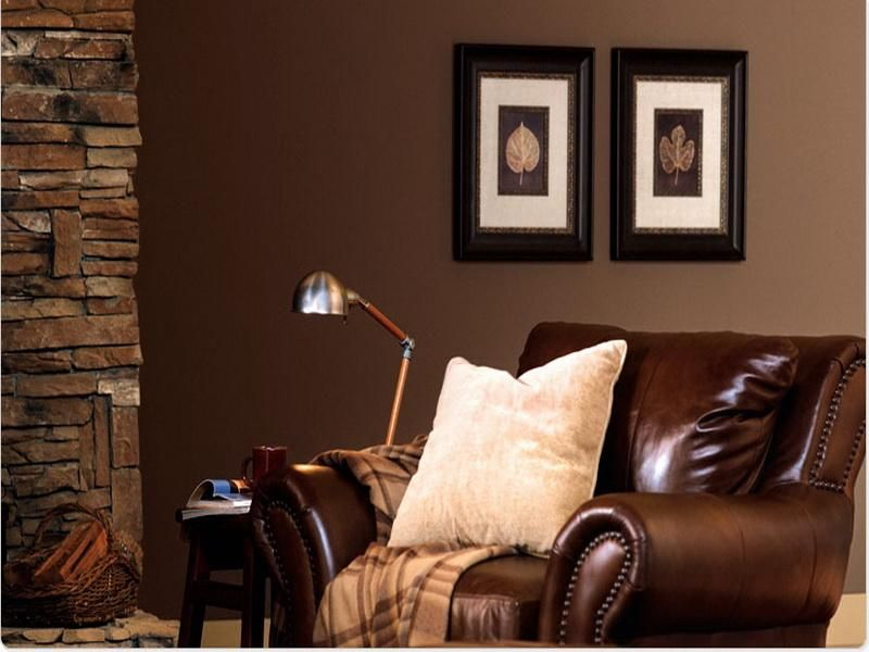 paint colors living room brown