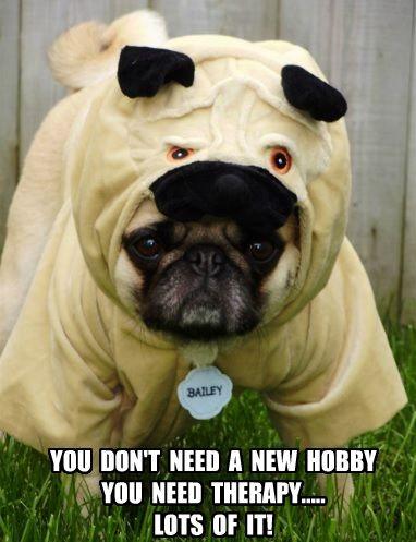 Funny Pug Dog Meme Pun. I had to make a meme of our Pug ...