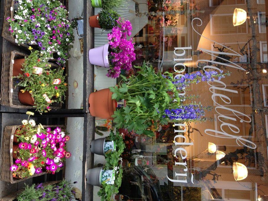 Amsterdam Flower Shop