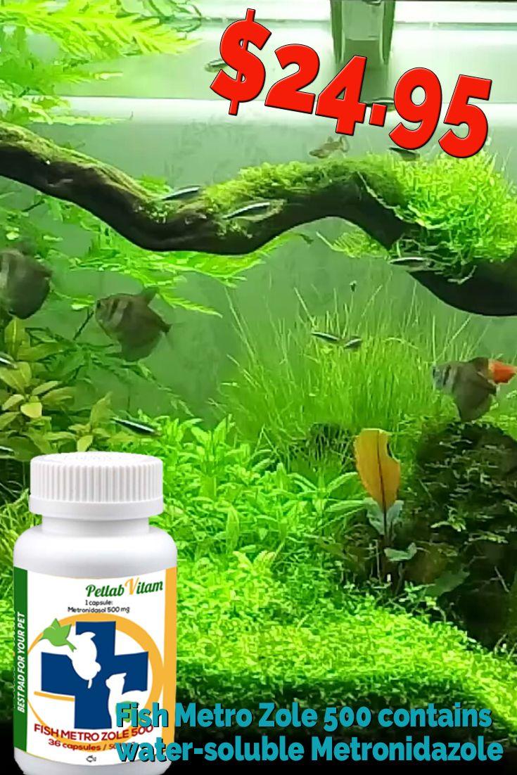 Metronidazole (Fish Metro Zole 500) 36 capsules