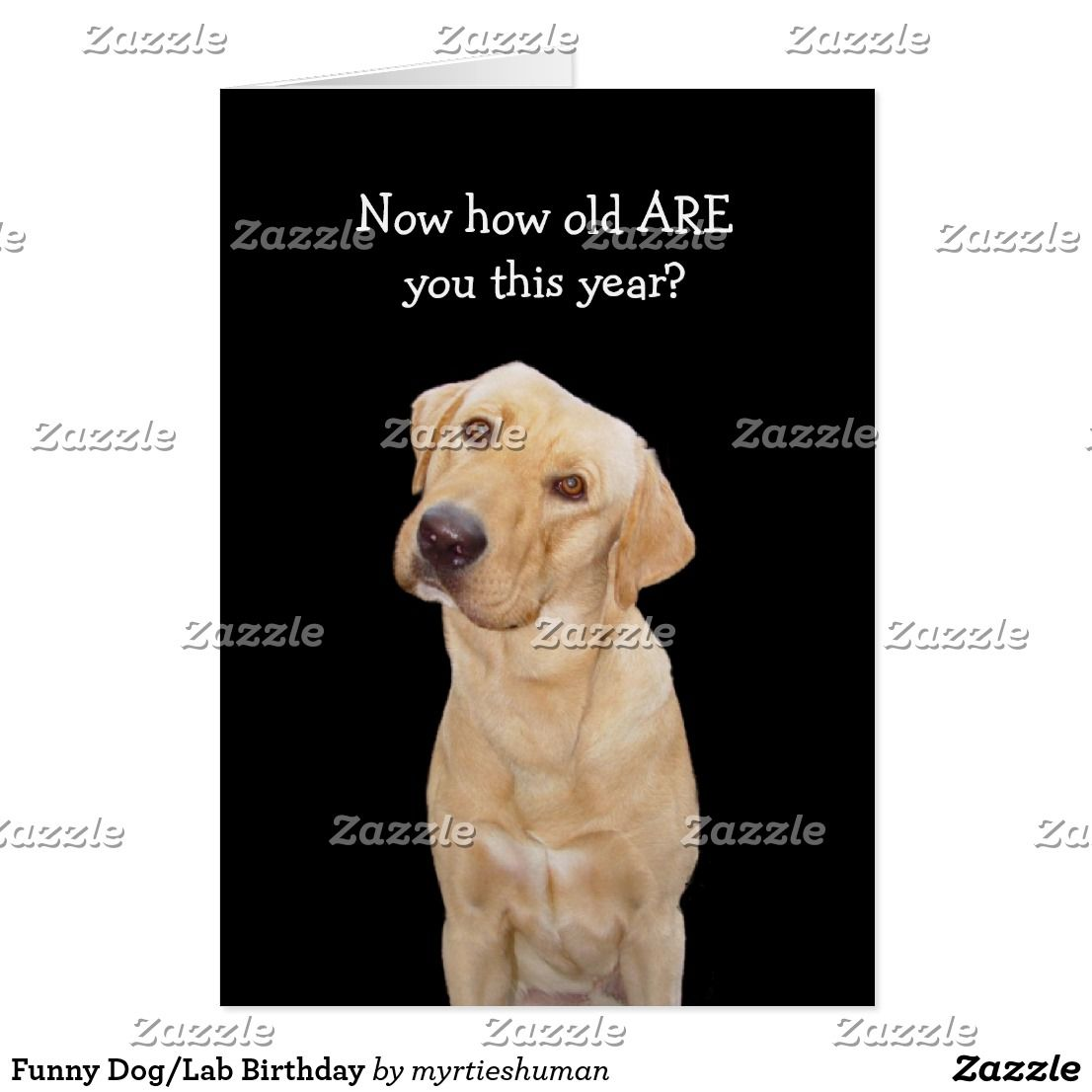 Funny Doglab Birthday Card Funny Greeting Cards Pinterest Dog