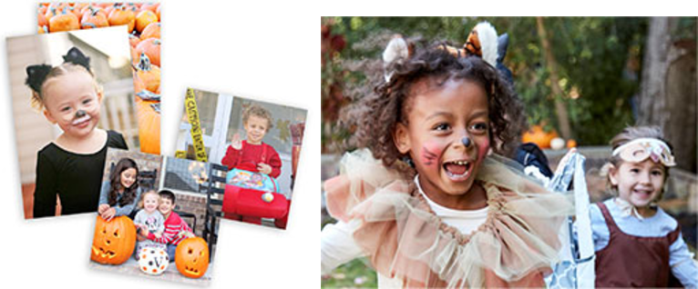 Shutterfly Canada Offers: 101 FREE 44 or 46 Prints & More Offers With Promo Code & More Offers http://www.lavahotdeals.com/ca/cheap/shutterfly-canada-offers-101-free-44-46-prints/131919