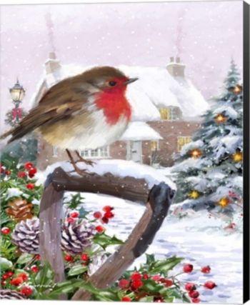 Robin 1 By The Macneil Studio Canvas Art