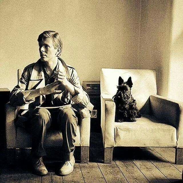 RIP  David  Bowie,  lover of Scottie Dogs