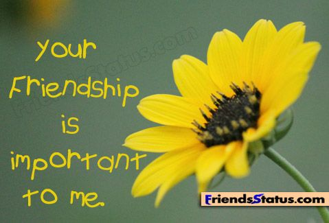 Friendship Quotes For Facebook Friendship Images With Quotes For