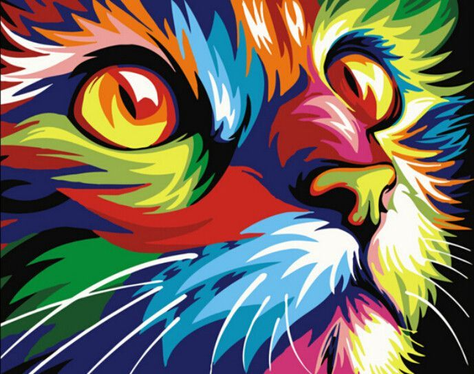 Colorful Cat Wall Art Gifts Number Painting Cat, Framed Wowdecor Paint by Numbers for Adults Beginner Kids Kitten 40x50 cm