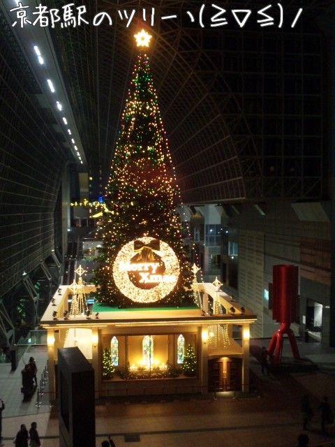 11/12/18 京都駅のツリーヽ(≧∇≦)ノ