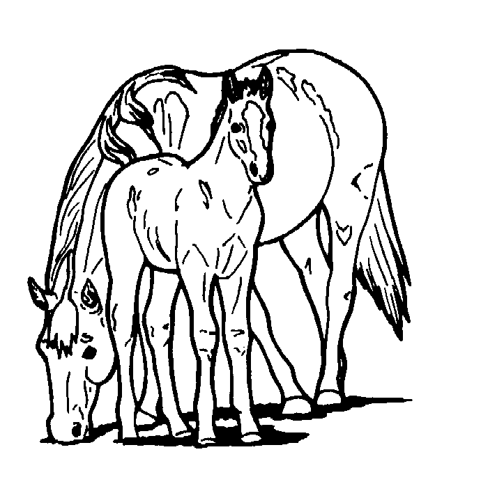 Free Printable Horse Coloring Pages For Kids | Cuadro