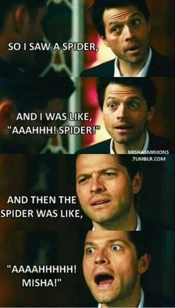Totally Kyle Spider : totally, spider, Someone, Misha, Collins, Totally, Amanda, Supernatural, Funny,, Collins,