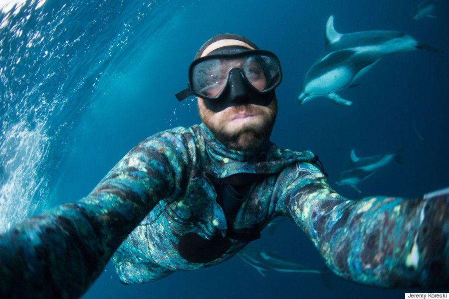 Jeremy Koreski From Tofino Swimming with the Dolphins Off Tofino - marine biologist job description