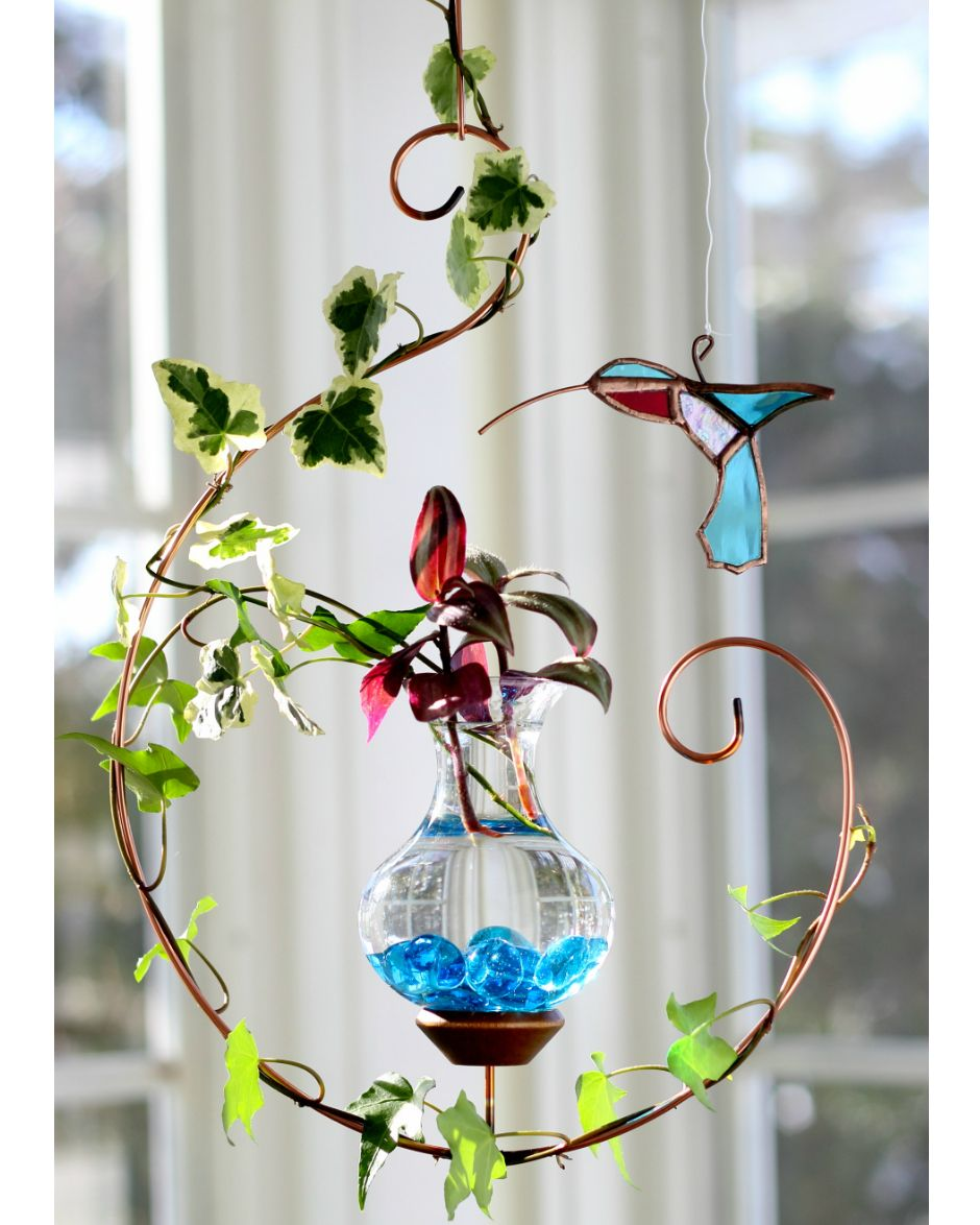 Beautiful Live Plants Included Our Harmony Hanging Water Garden
