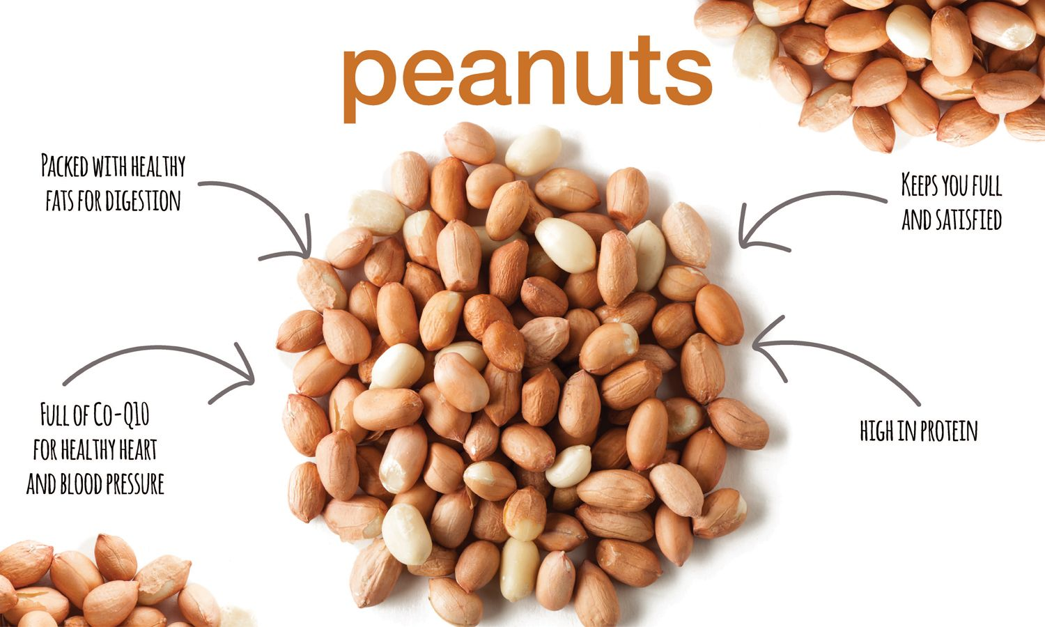 What Are The Health Benefits Of Peanuts Energize Healthy Peanuts Health Benefits Nutrition