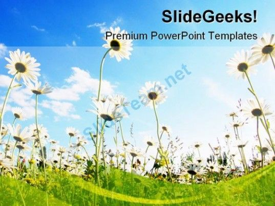 Flowers In Summer Nature PowerPoint Backgrounds And Templates 1210 - nature powerpoint template