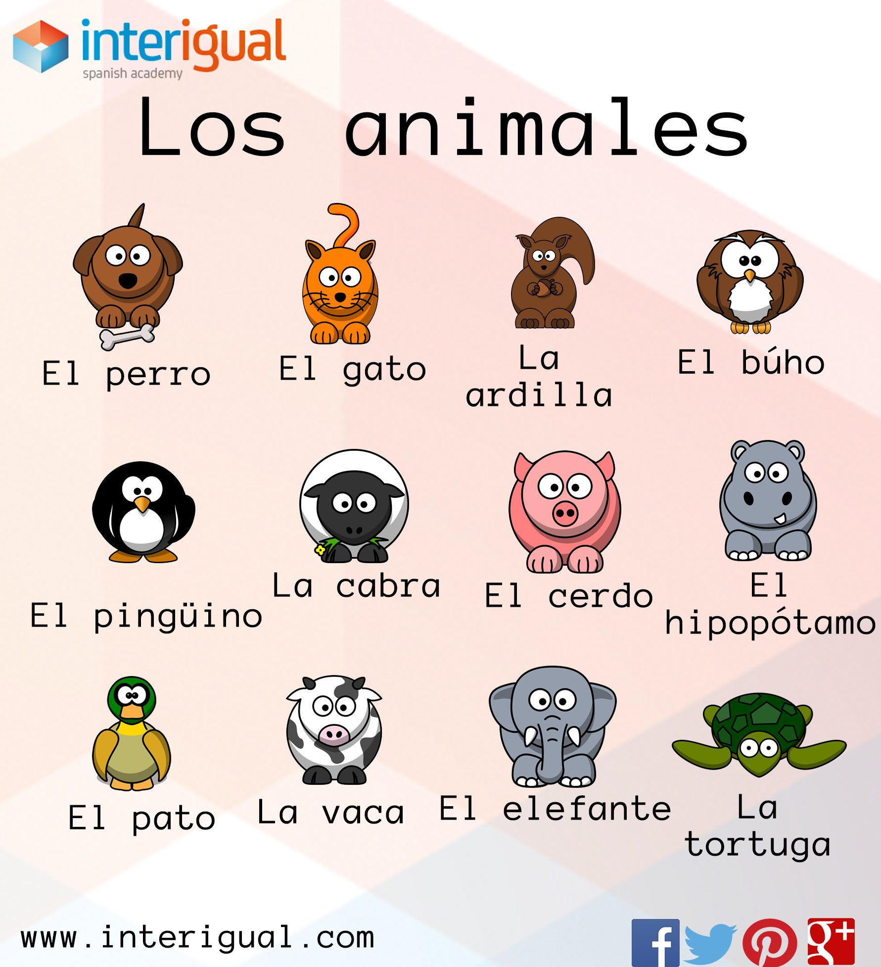 Los animales en español/ The animals in spanish | Bichos | Pinterest ...