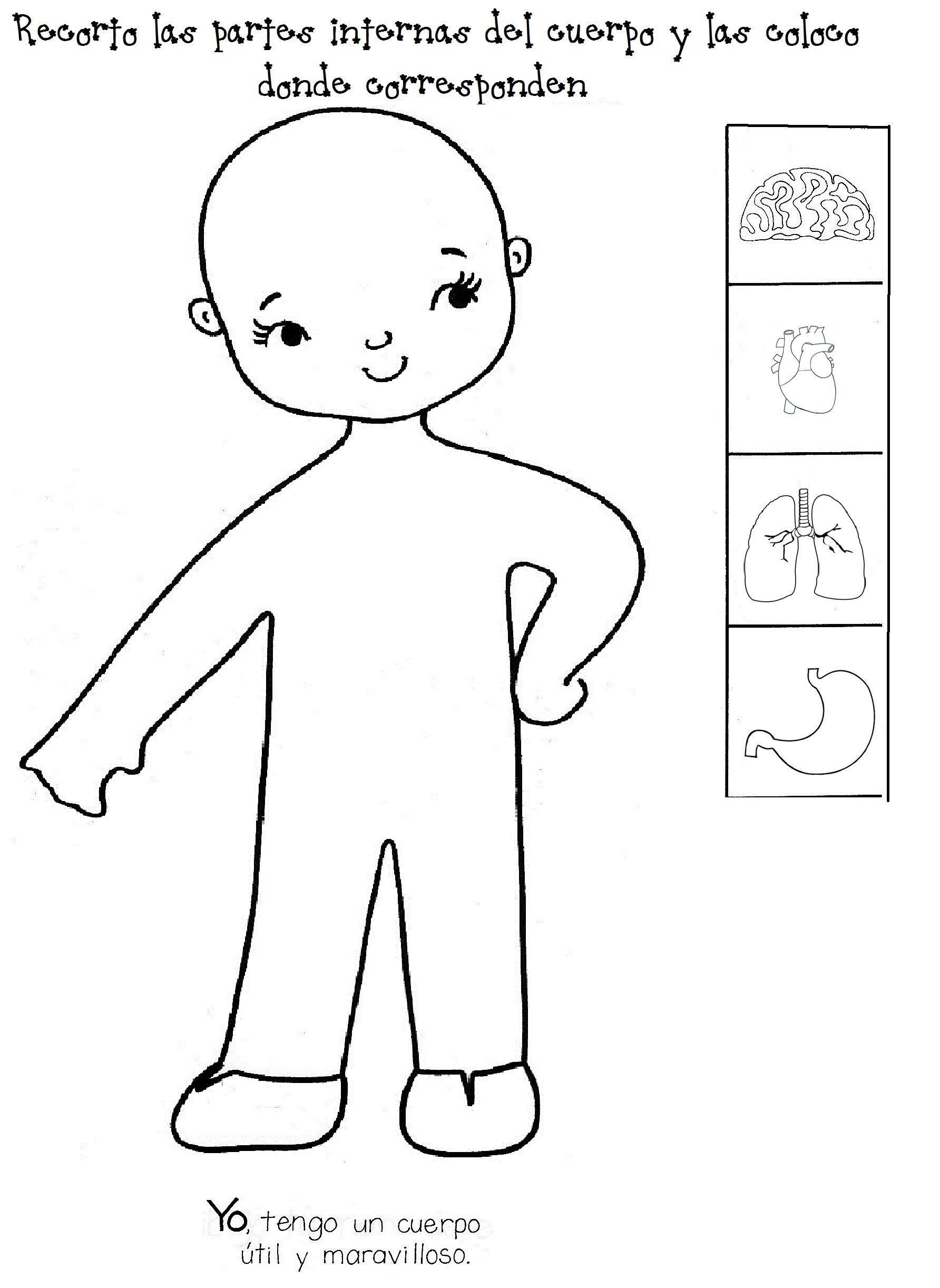 Encantador Dibujos Para Colorear El Cuerpo Humano Para Niños De ...