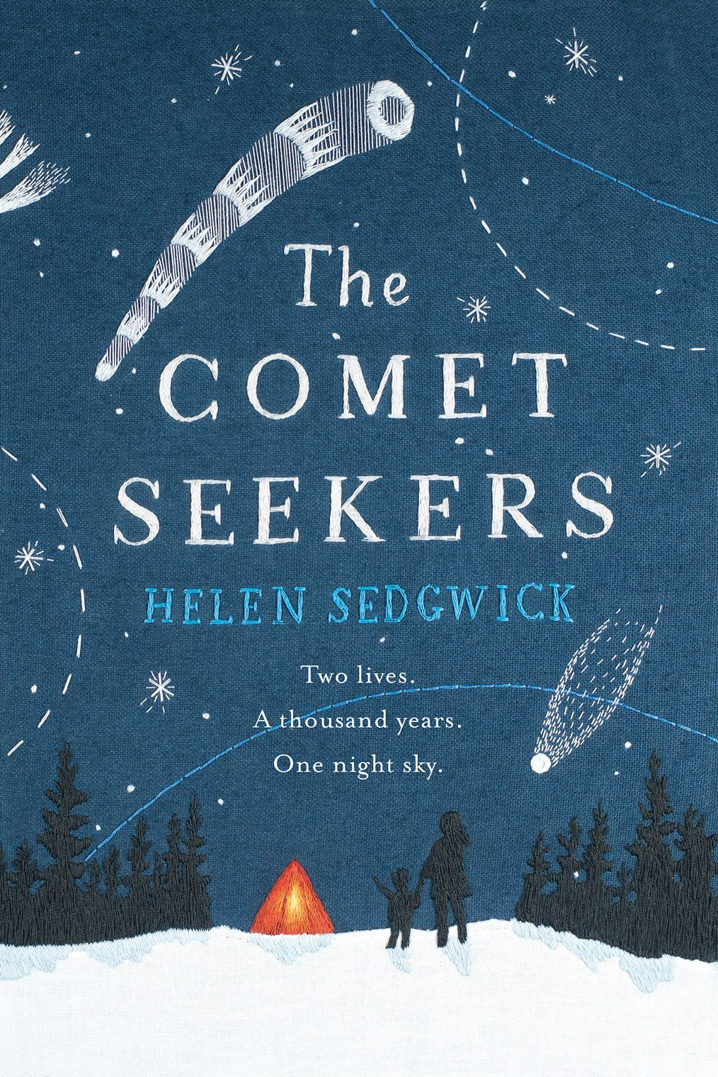 The Pool | Arts & Culture - Helen Sedgwick The Comet Seekers