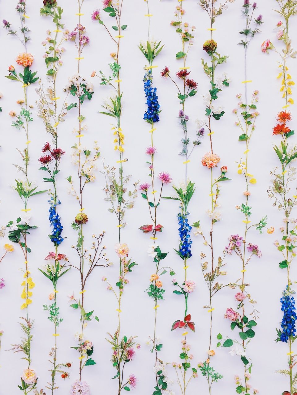 Best Ddp Ordinary Moments Vsco Grid Flower Wall Decor Flower Wall Floral Wallpaper 640 x 480