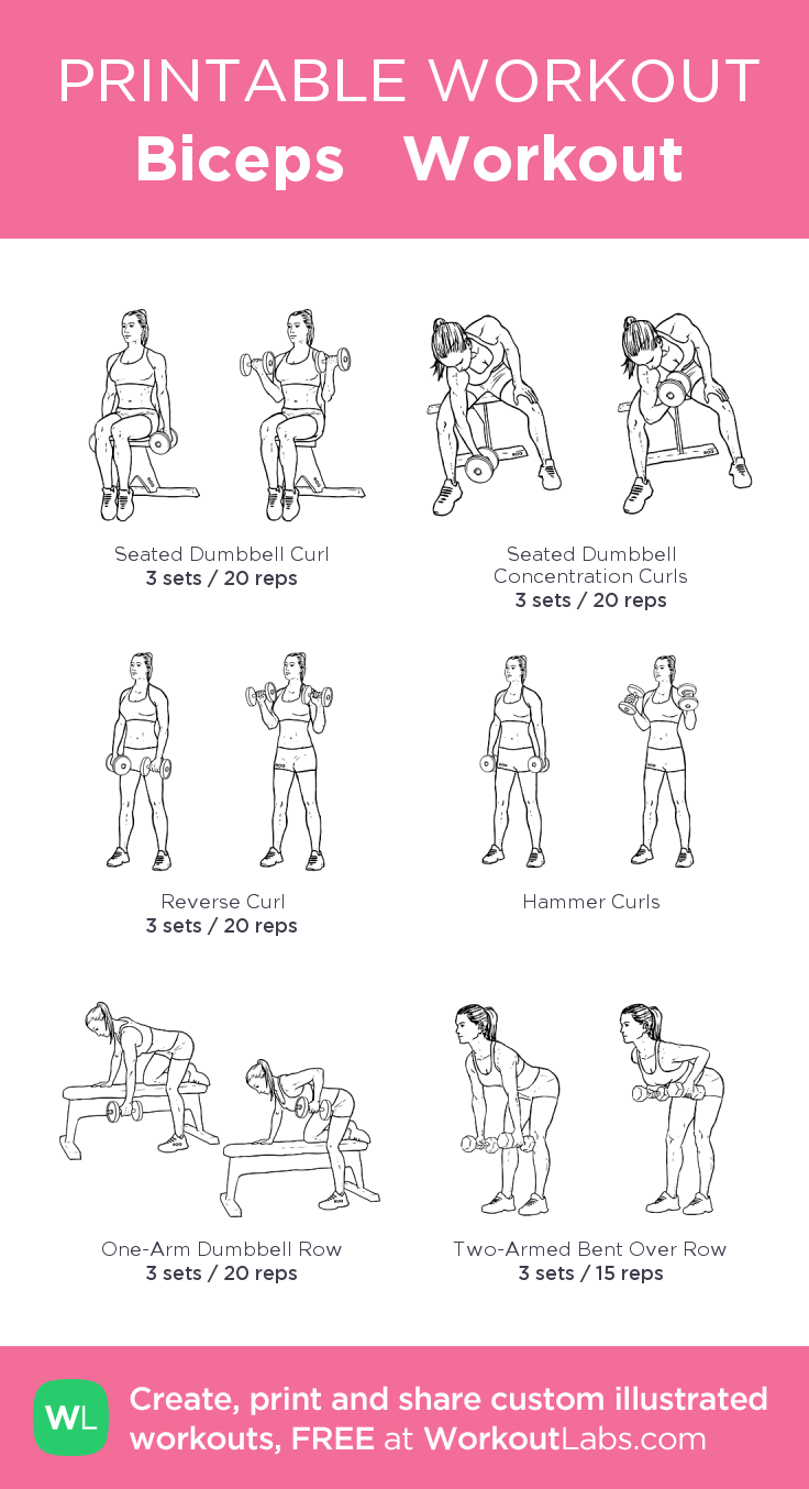 Biceps Workout · Free workout by WorkoutLabs Fit