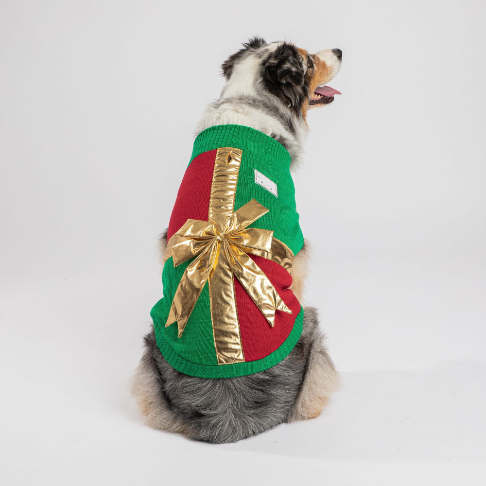 Pin on Ugly Dog Sweater Ideas