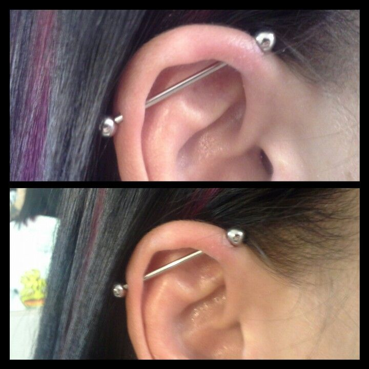 Industrial Piercing I Did Two Weeks Into Healing Cute