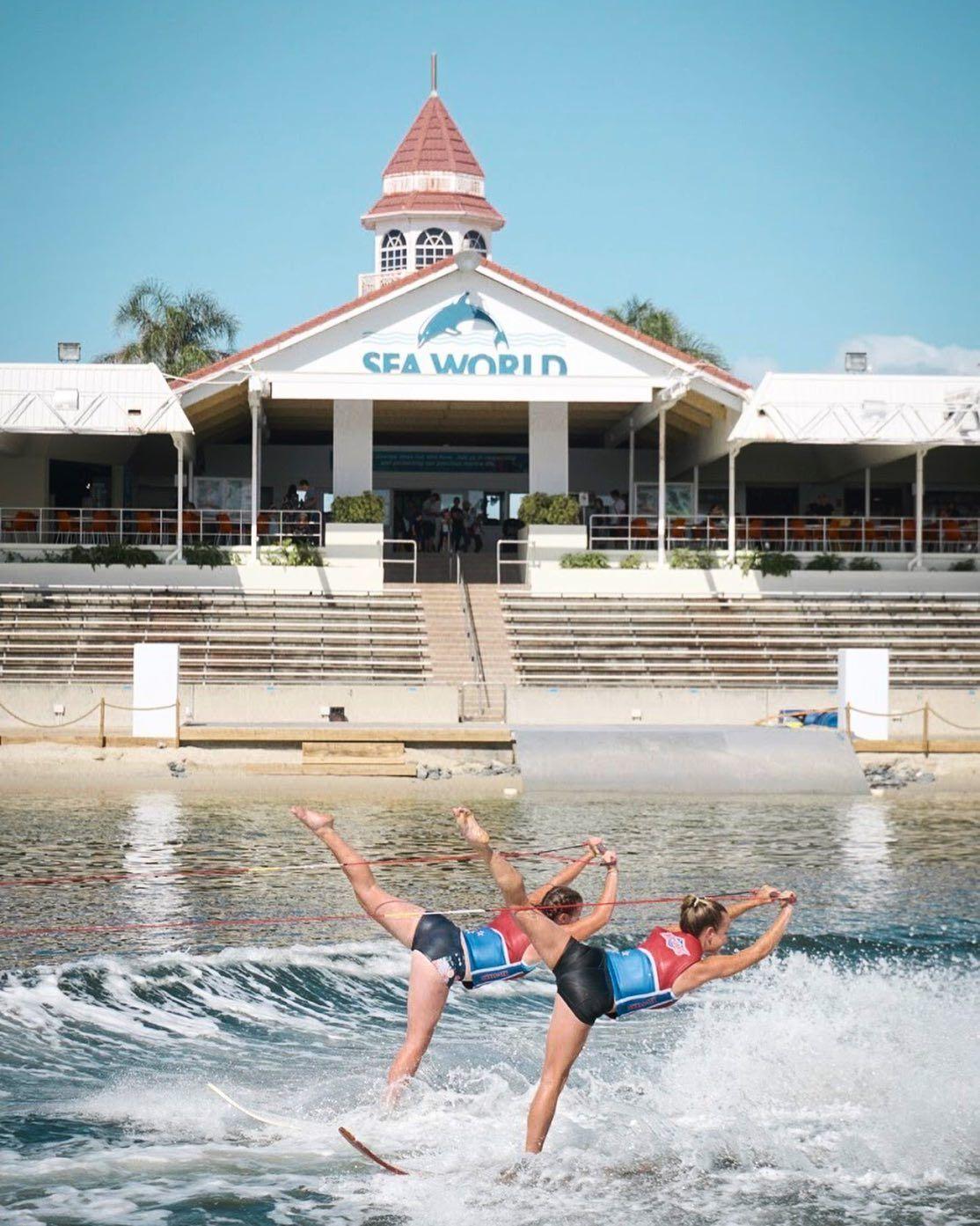 Sea World Marine Park Gold Coast Australia Sea World Australia Travel Australia