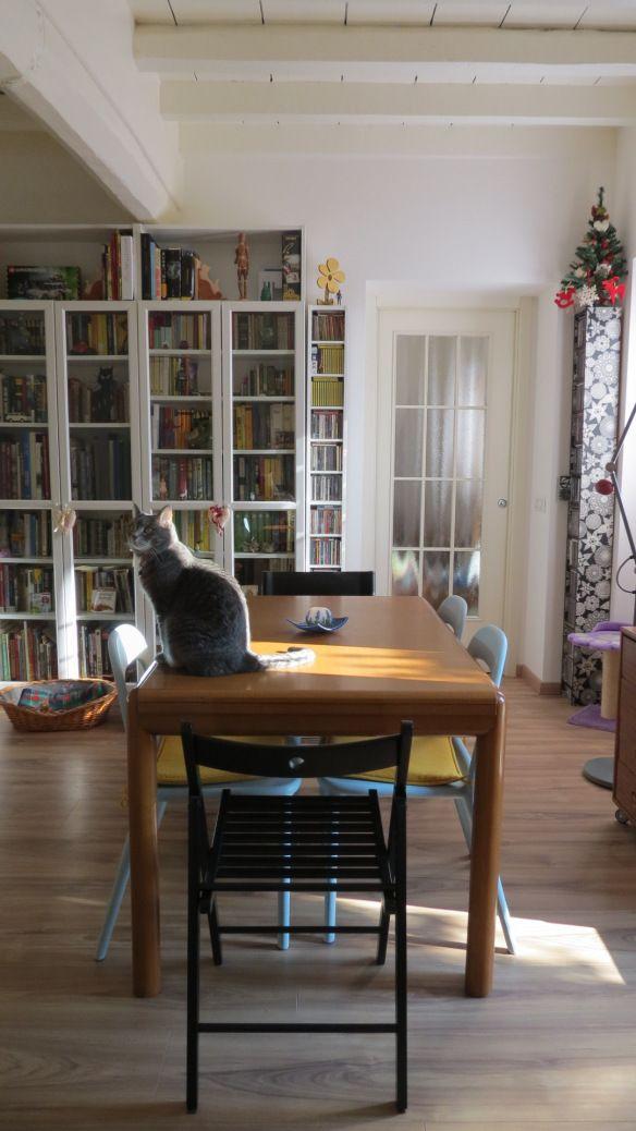 soggiorno con gatto: dal corridoio d\'ingresso si accede subito alla ...