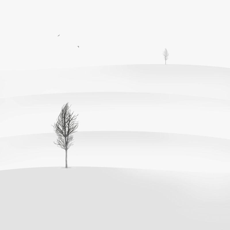 Distance by hossein zare minimalist photographyblack white