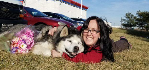 15 Jahre war dieser arme Hund angekettet – Dann fand er endlich ein neues Zuhause