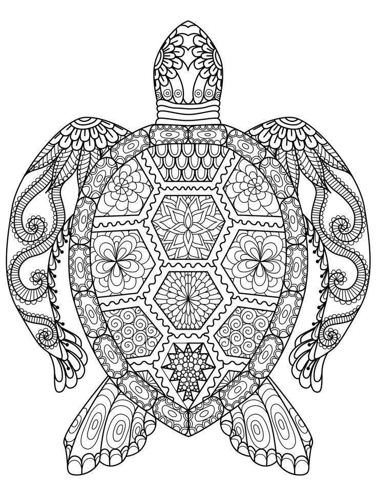 20 Gorgeous Free Printable Adult Coloring Pages Turtle Coloring