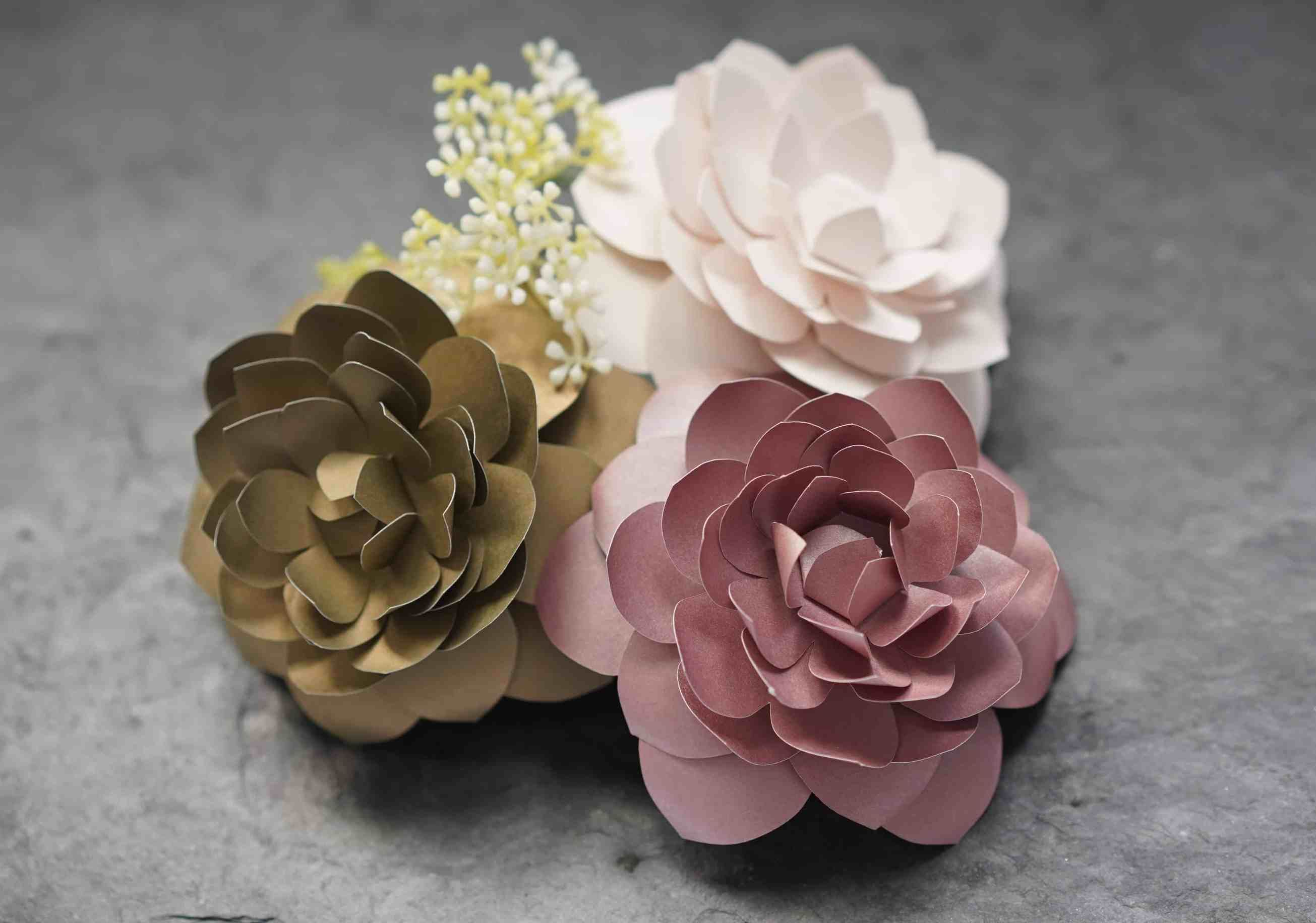 Diy Paper Camellia With Free Flower Template Flower Template Rolled Paper Flowers Paper Flowers