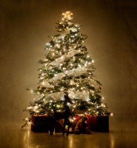 Use Ribbon Instead Of Garland Cool Christmas Trees Elegant Christmas Trees Ribbon On Christmas Tree