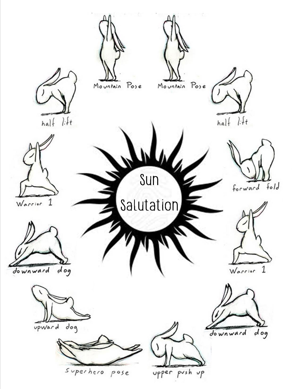 Sun Salutation Demonstrated By Bunnies ArtBrian Russo Bunnyoga Index Goes Clockwise