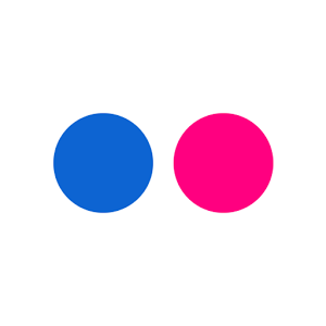 Flickr Logos, Free logo, Logo templates