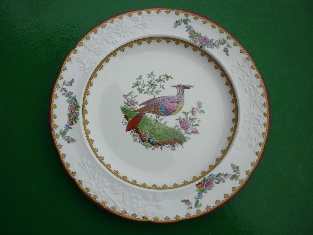 Assiette Porcelaine Anglaise #9: ASSIETTE EN PORCELAINE ANGLAISE COPELAND DECOR OISEAU MODELE VIENNA