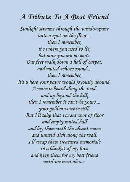 A Tribute To A Best Friend Pet Loss Poem Dog Poems Pet Loss Grief