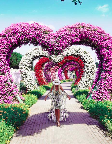 What amazing place! in 2019 Miracle garden, Dubai garden