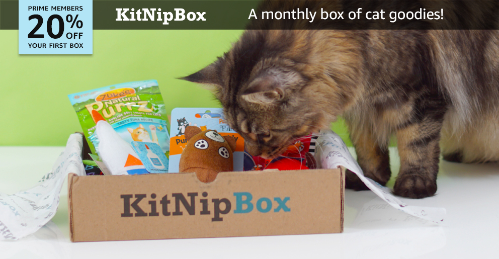 Amazon Com Pets Subscribe With Amazon Pet Subscription Box Pets Kitnipbox