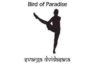 yoga poses  bird of paradise yoga yoga place yoga