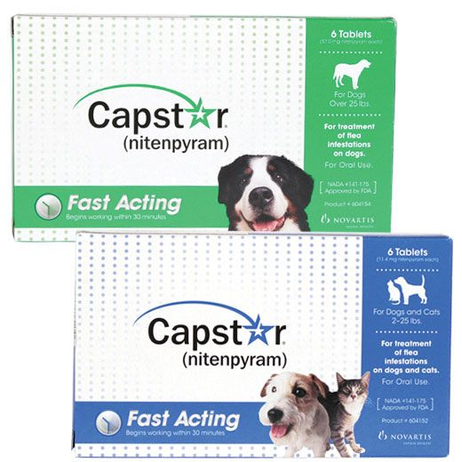 Capstar Revival Animal Health Fleas Pet Meds Dogs
