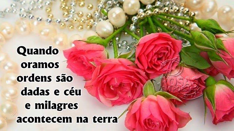 Rosas Em Poesias O Poder Da Oracao Buque De Rosas Rosas