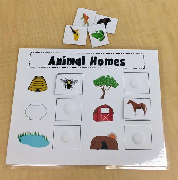 Animal Homes Game//Kids Games Puzzles //Preschool Kindergarten