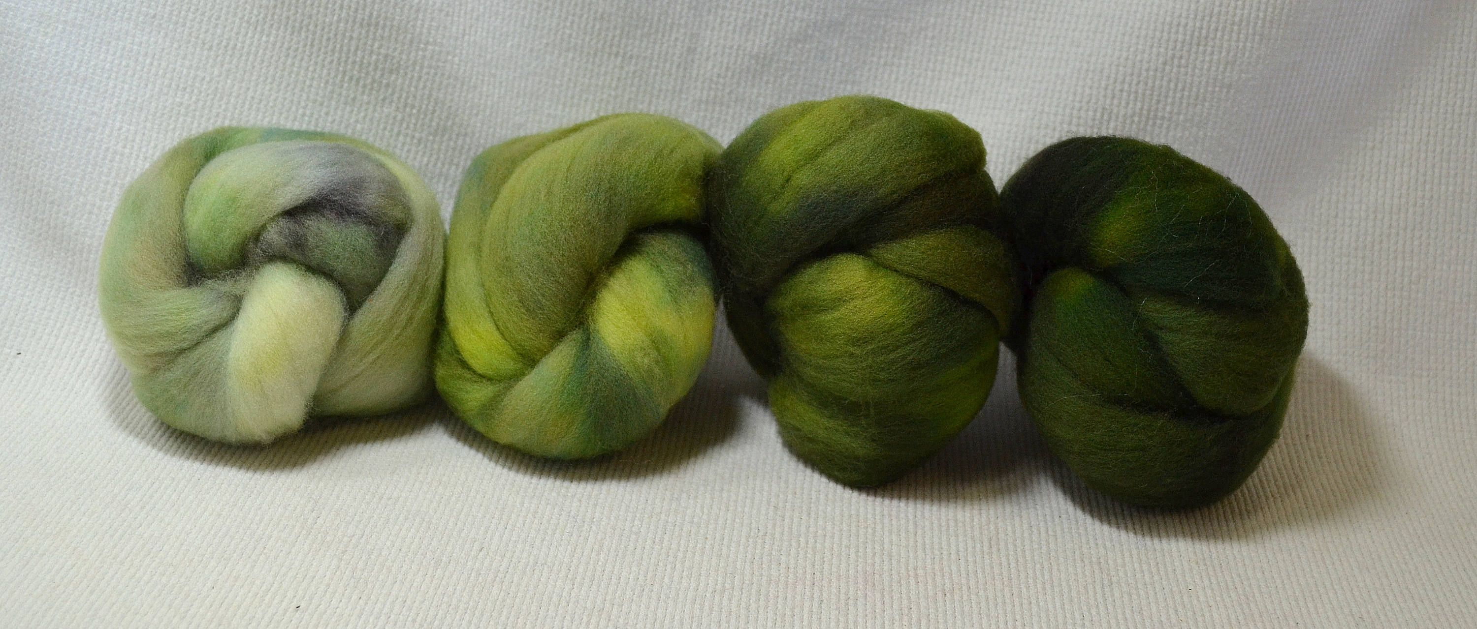 NEW Hand Dyed Gradient Fiber Set - American Targhee Combed Top in Mossy Semi Solid 2 ounces - Play With Your Fiber! by yarnhollow on Etsy