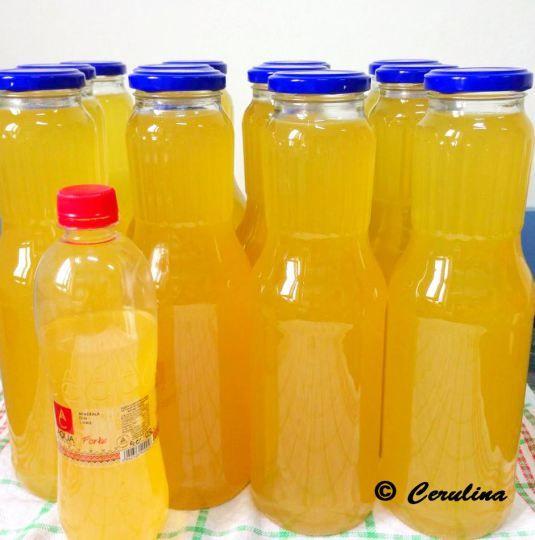 Sirop Din Flori De Soc Preparat La Rece Elderberry Juice