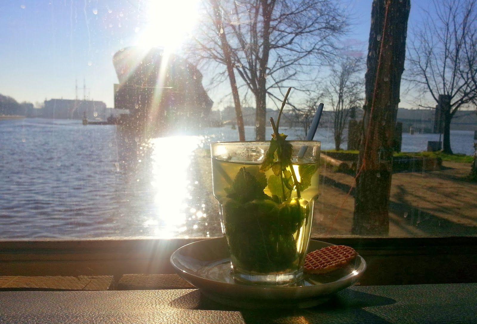 FOOD TRAVEL PHOTOGRAPHY: HANNEKE'S BOOM Amsterdam