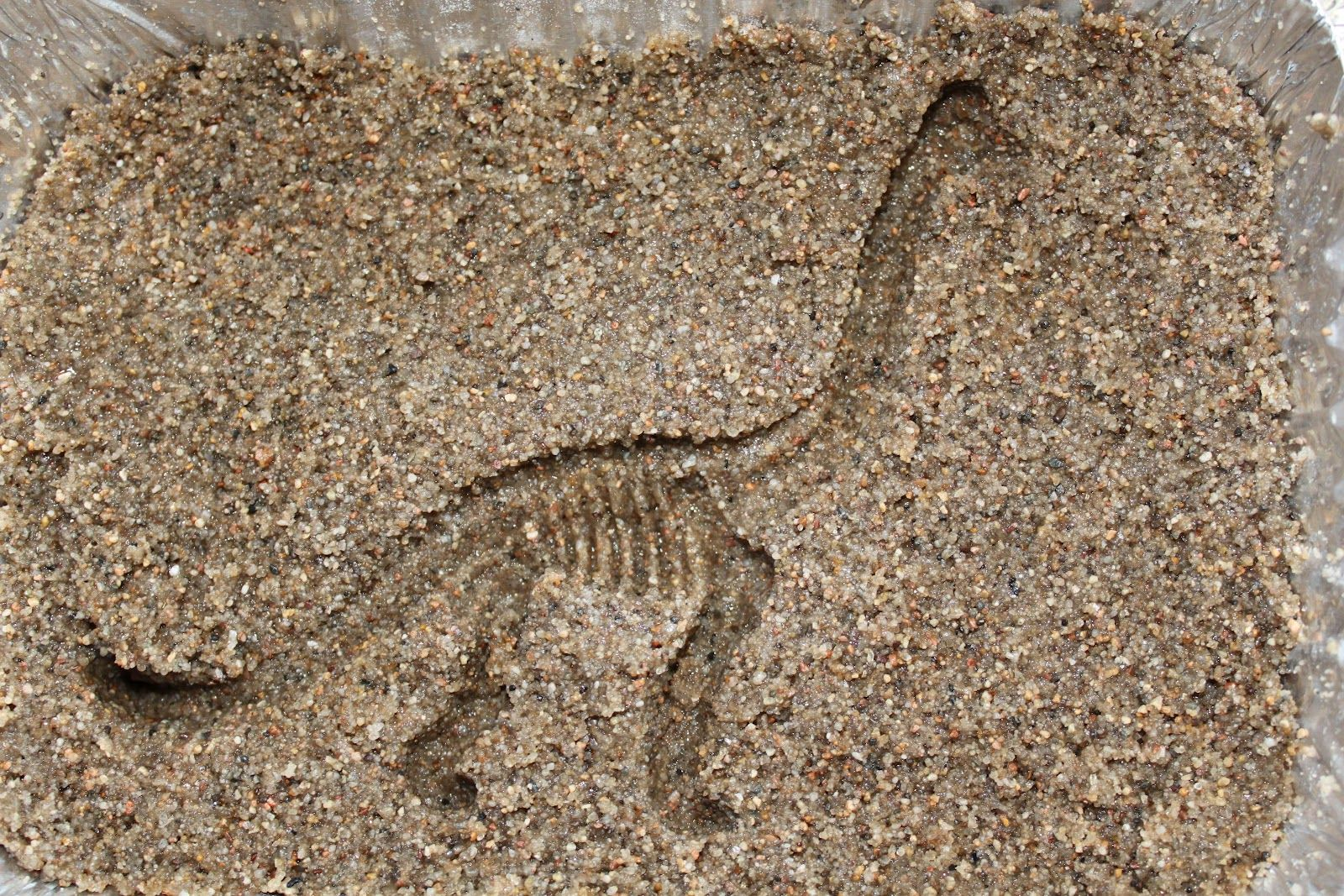 making dinosaur fossil imprints with plastic dinosaurs