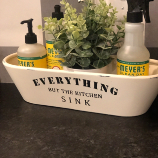 Everything But The Kitchen Sink Tray In 2020 Sink Kitchen